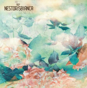Nestor Is Bianca sort un nouvel album