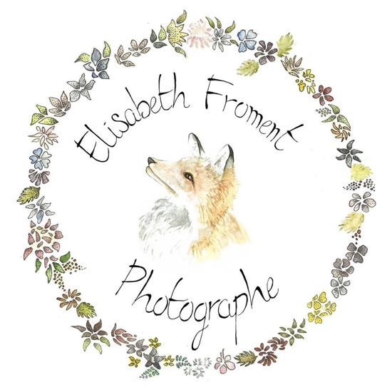 Elisabeth Froment Photographe